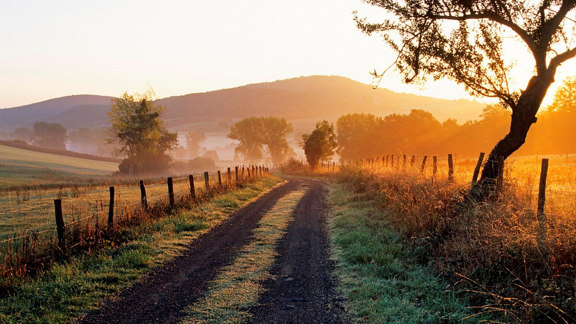 Poesia saluto e augurio pier paolo pasolini la for Disegni di cabina di campagna